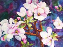Apple Blossoms - watercolor
